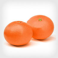 Military Produce Group Clementine
