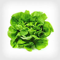 Military Produce Group Salad Greens