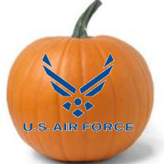 Military Pumpkins US Air Force