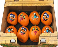 Novelty painted pumpkins